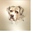 Thumbnail: Pet Portrait Commission