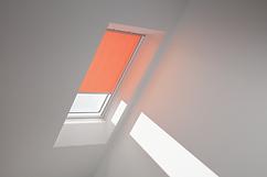 Orange - 4164