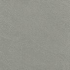 Dusty Green - 4165