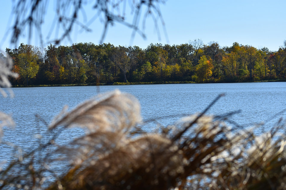 Inside of the Bird Blind at Lake Loramie.JPG
