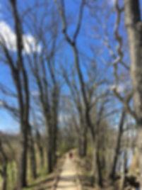 New Tipp City Hiking Trail.JPG