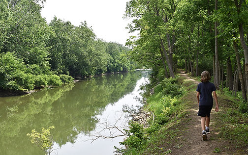 The Roger Presley Trail in the Summer.JP