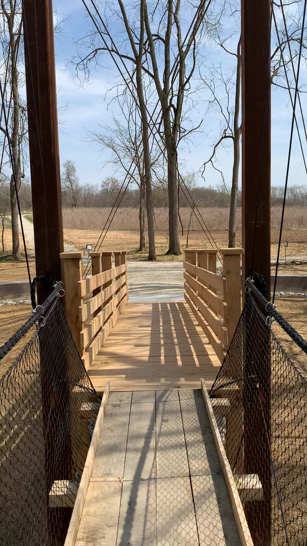 New Suspension Bridge at the Park