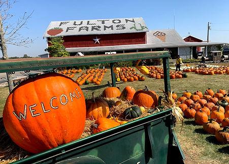 Fulton Farms Fall Pumpkins .jpg
