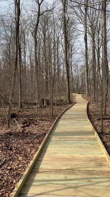 The Boardwalk Trail at Garbry Big Woods