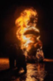 Burning Snowman Festival.jpg
