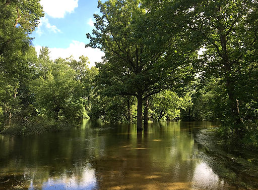 Tippecanoe River.JPG
