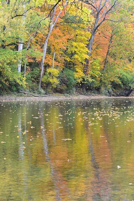 Buckeye Trail at Kyle Park Fall View.JPG