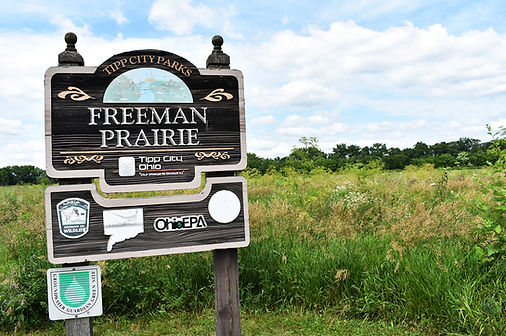 Freeman Prairie Tipp City.jpg