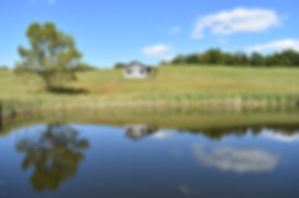 Reflecting Pond at Calhoun County Park.j