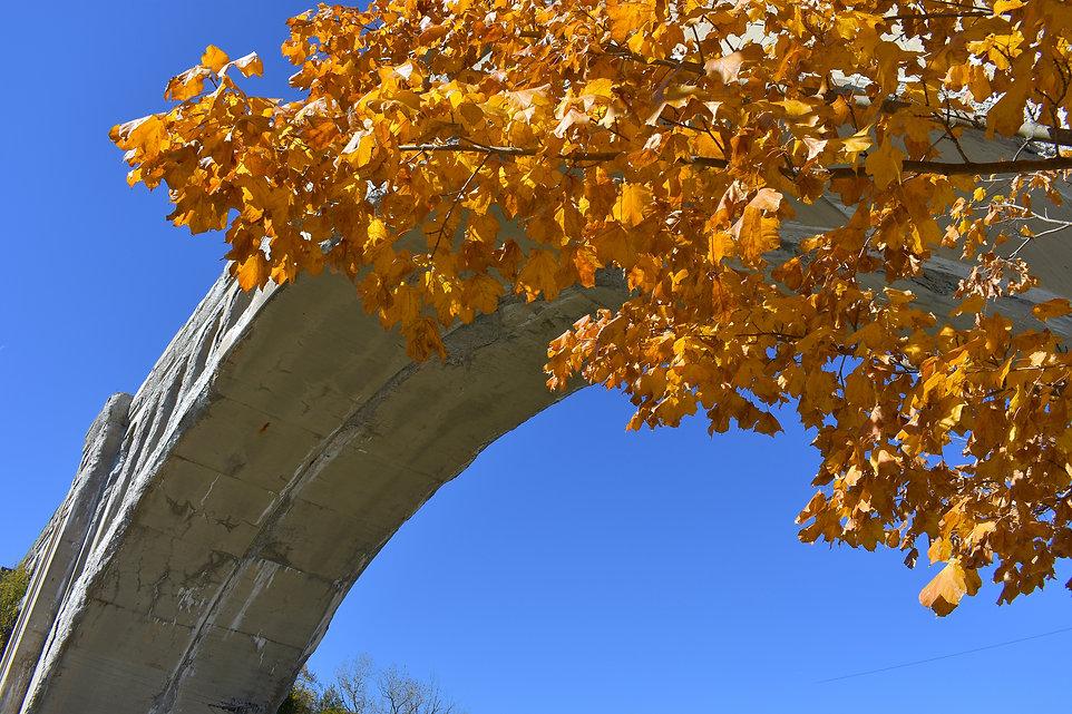 Big Four Bridge with Yellow Fall Foliage Sidney.jpg