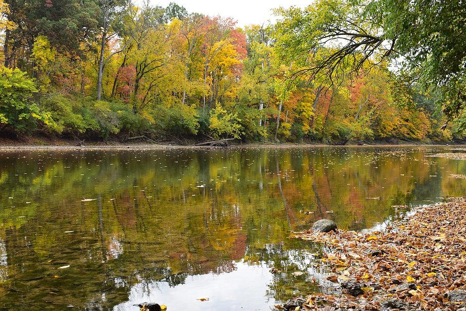 Buckeye Trail Kyle Park in the Fall.JPG