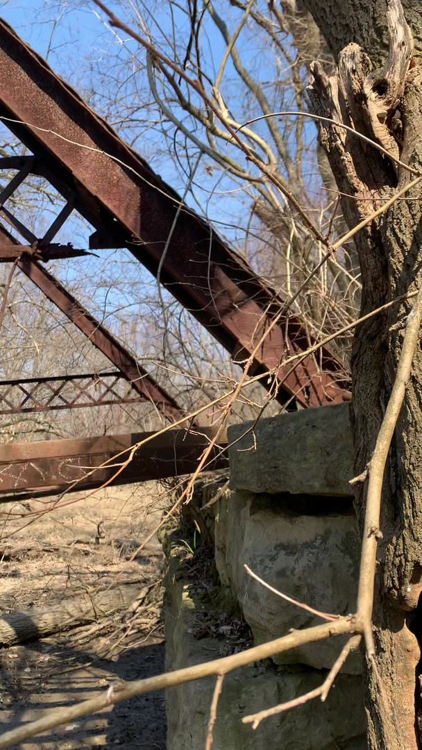 An Old Steel Bridge in the Woods