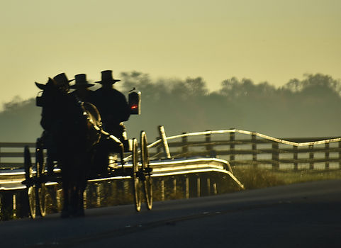 Amish in the Early Morning Fog on Route