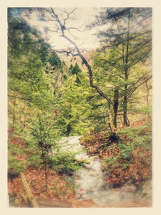 Spring at Hocking Hills Effect.jpg