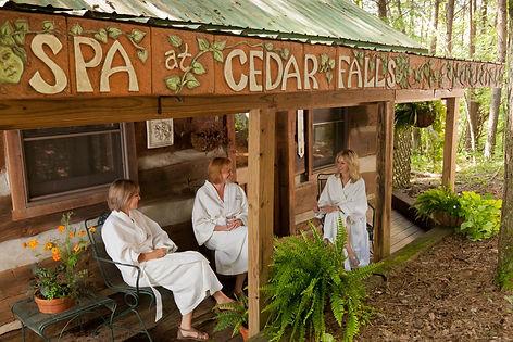 Inn and Spa at Cedar Falls NOT MINE.jpg