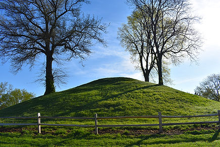 Adena Mound Enon Wide View.jpg