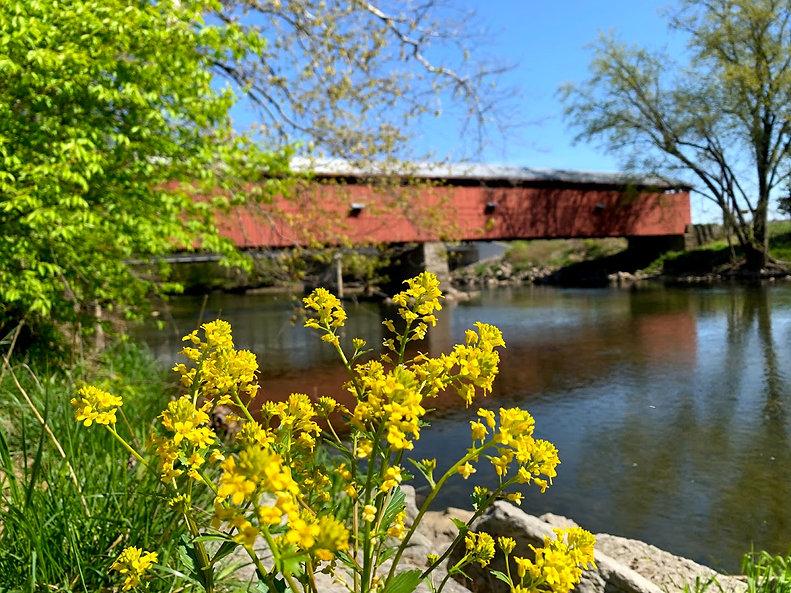 Eldean with Spring Yellow 2021.jpg