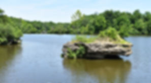 Swift Run Lake Rock.JPG