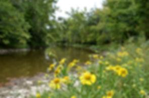 Stillwater River at Stillwater Prairie Y