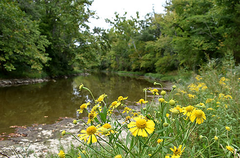 Stillwater River at Stillwater Prairie Y