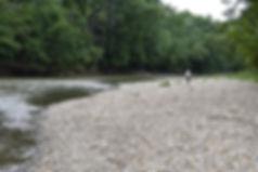 Fossil Beach Walker.jpg