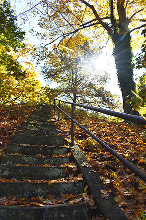 Stairs Leading to the Top of Cemetery Mo