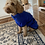 Thumbnail: Towelling / Microfibre Drying Coat Small to XL