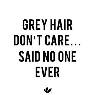 grey hair dont care.jpg