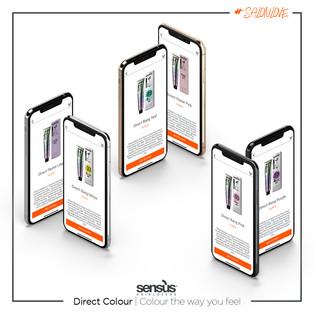 Direct Colour.jpg