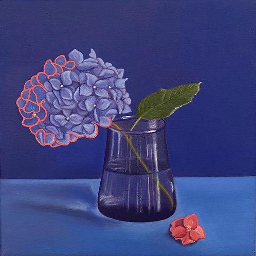 Suzanne Kemplay - Original oil painting 'Blue Hydrangea on Blue'