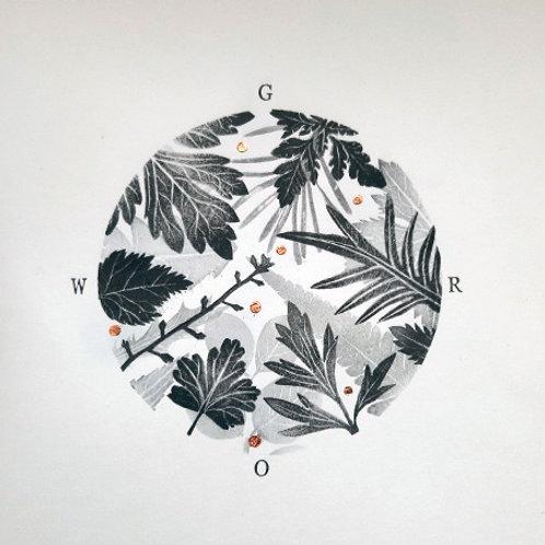 Cass Barron - Botanicals prints 'GROW'