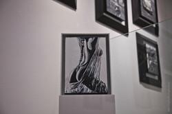 galeria 26