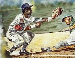 beisbol 65x82