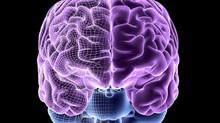 Brain Preservation With Brain Health Supplements (Scientific Update)