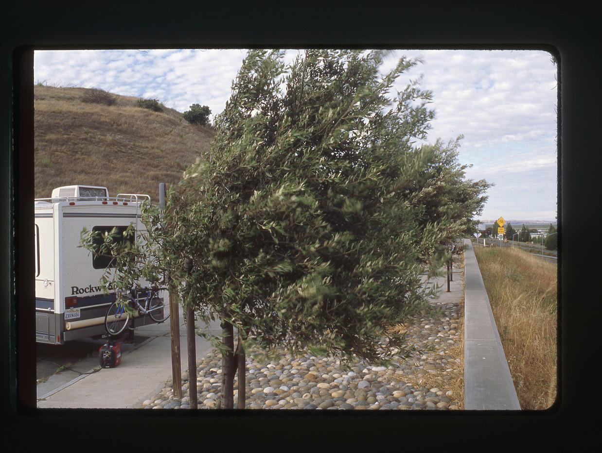 Vista Images from LR-035.jpg