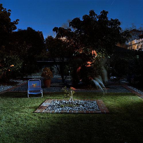 Untitled, Backyard #2