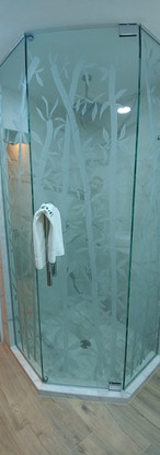 Regadera baño visitas