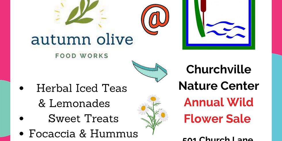Autumn Olive @ Churchville Nature Center Annual Wild Flower Sale