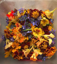 The last of the autumn edible flower mix
