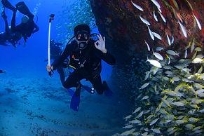 Freediving in Costa Rica, freedive in costa rica