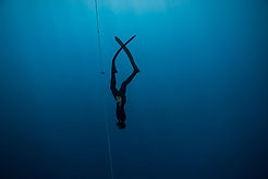 Freediving in Costa Rica, freedive in costa rica