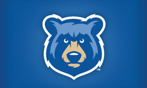 cartoon-bear-mascot-1