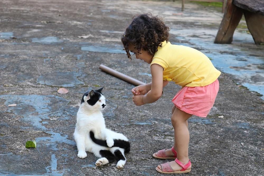 Tarsila e seu novo amigo, o senhor gato