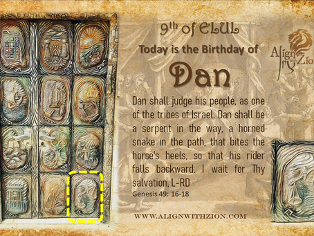 Dan's Birth Date