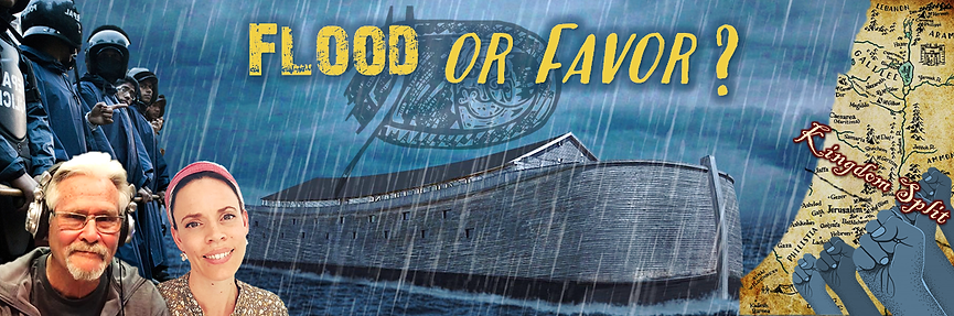 Flood or Favor banner.png