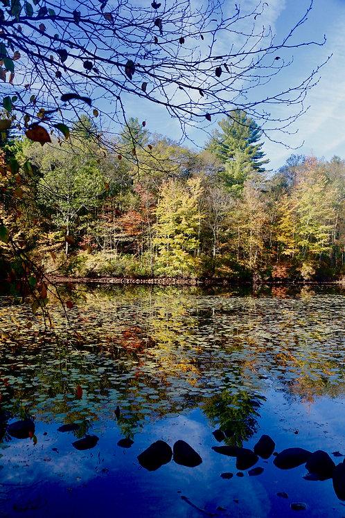 Early Fall Blue Skies
