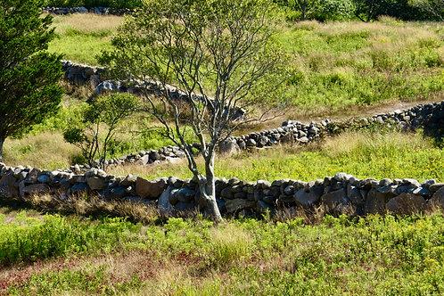 Zig Zag Stone Wall