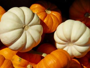 Gourds.jpeg