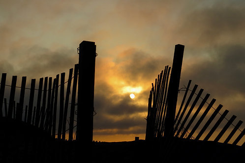 Sunrise In The Fence